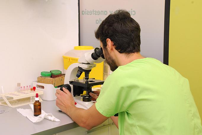dsc_0997-laboratorio