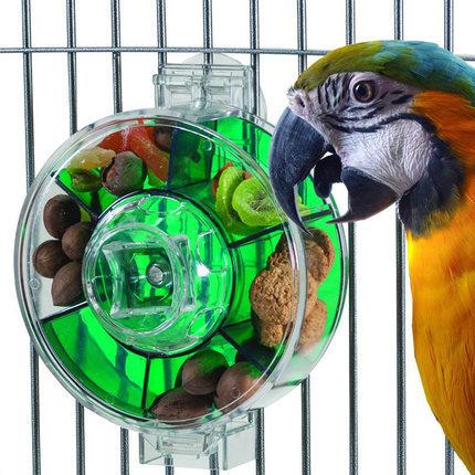 US-font-b-food-b-font-parrot-font-b-pet-b-font-font-b-bird-b